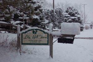 LHF winter sign